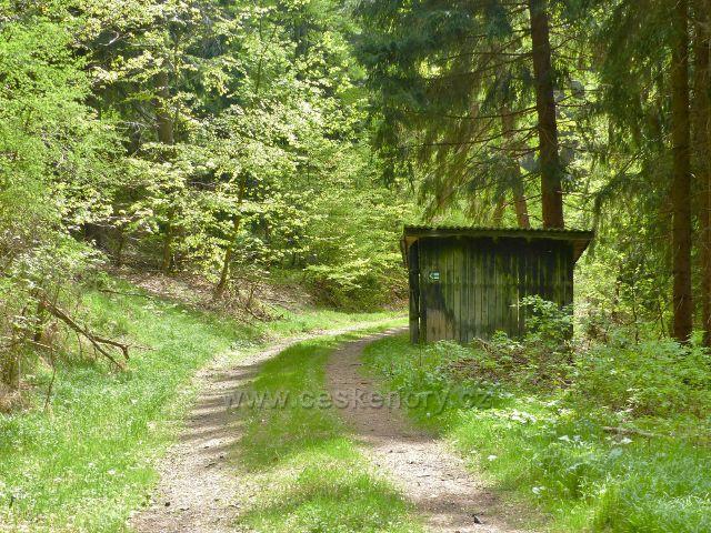 Písařov - odbočka trasy po zelené TZ z vrstevnicové cesty po úbočí Čečoly ,vlevo vzhůru pokračuje lesní pěšinou