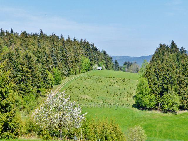 Pastvina pod Spáleniskem pod výhledovým místem na trase po zelené TZ k Mlýnickému Dvoru