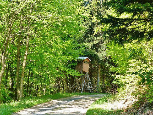 Mlýnický Dvůr - posed u cesty před křižovatkou Osikový les