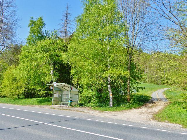 Mlýnický Dvůr - cesta po zelené TZ vyúsťuje u autobusové zastávky na silnici č.11