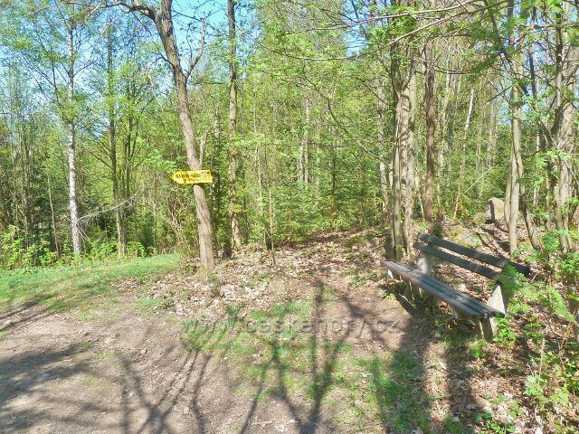 Králíky - lavička u Hraběcí stezky k Mariánskému pramenu