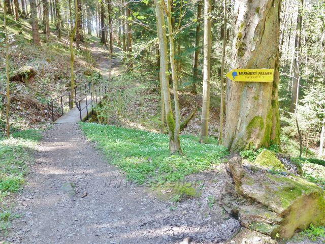 Králíky - odbočka z Hraběcí stezky k Mariánskému pramenu vede přes mostek