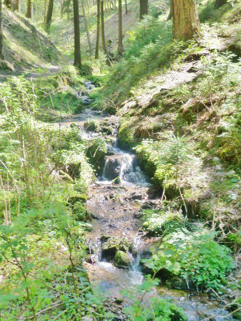 Králíky - Plynárenský potok na úpatí Lískovce
