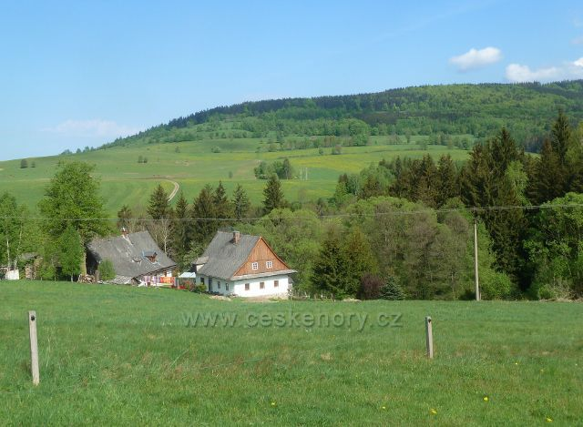 Malá Morava - podhorské pastviny