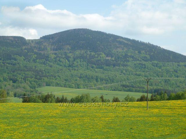 Podlesí - pohled na Sviní horu (1074 m.n.m.)
