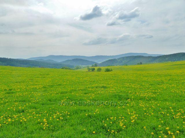 Horní Orlice - pohled z úbočí valu k Bukové hoře