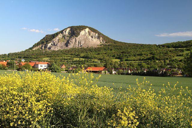 Želenický vrch