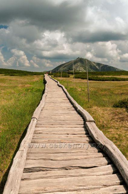 Povalový chodník na Úpském rašeliništi.