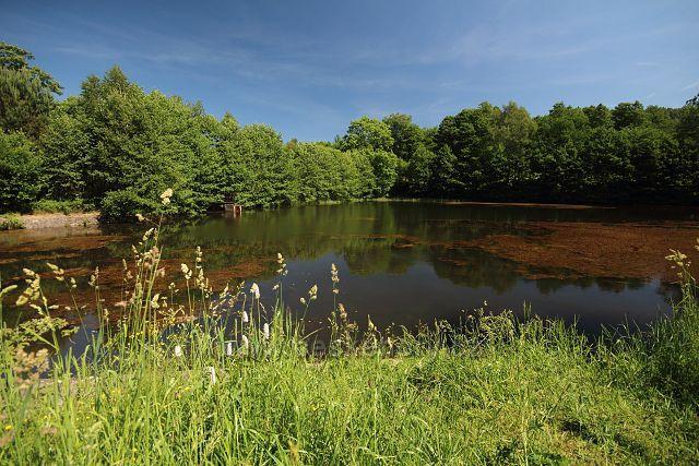Rájecký rybník