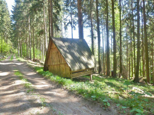 Česká Ves - krmelec u vrstevnicové cyklostezky na úbočí Jehlanu