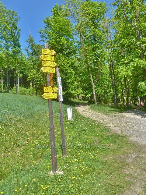 Lázně Jeseník - cyklistický rozcestník na rozcestí u Slovanského pramenu