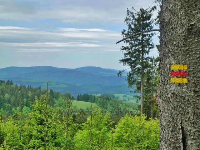 Pohled z úbočí Ucháče k Hanušovické vrchovině