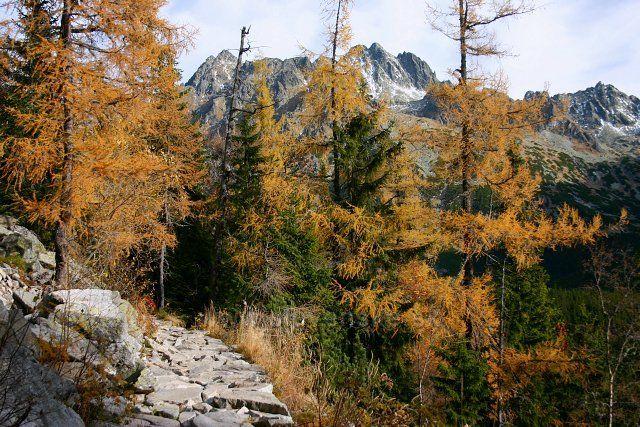 tu barví podzim