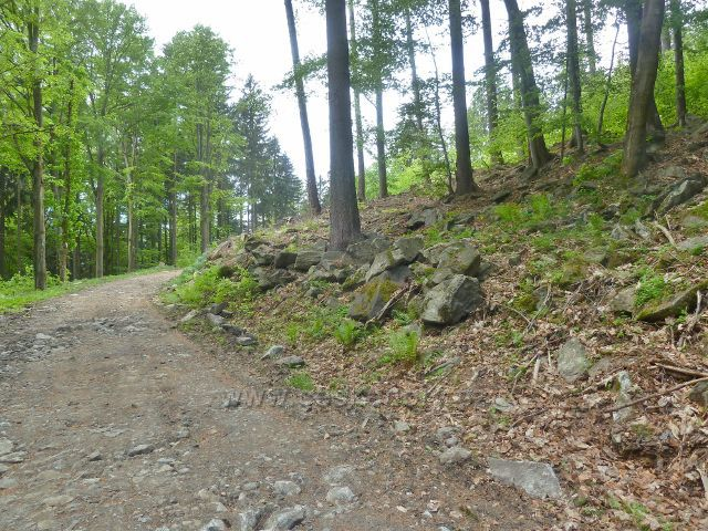 Cesta po červené TZ po východním úbočí Ucháče prochází kamenitým terénem