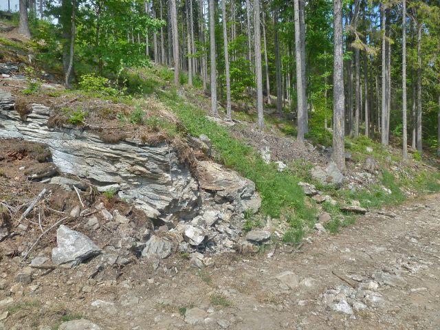 Kamenitá cesta po červené TZ po východním úbočí Ucháče mírně klesá k údolí potoka Laosinky
