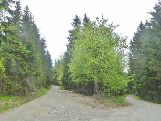 Rozcestí Tři kameny- začátek a konec okružní trasy kolem vrchu Ucháč
