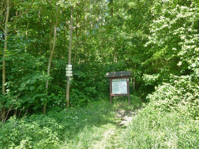 Bludov - turistický rozcestník a informační tabule před nádražní budovou