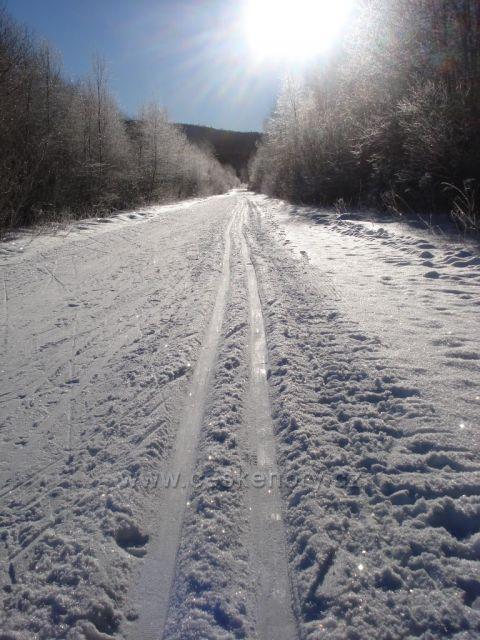 Šumava u Prášil,směrem na Slunečnou.