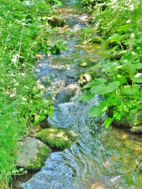 Pastviny - potok Orlička v chatové zástavbě
