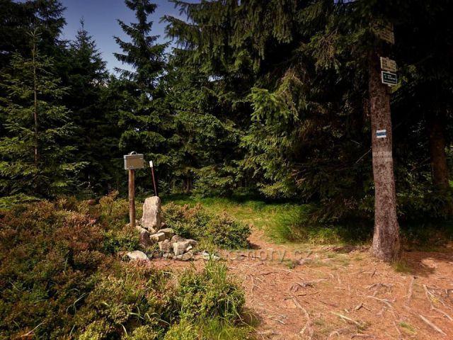 Jeřáb,1003mnm, je jediná tisícovka Hanušovické vrchoviny. Přes jeho vrchol prochází historická zemská hranice Čechy–Morava.