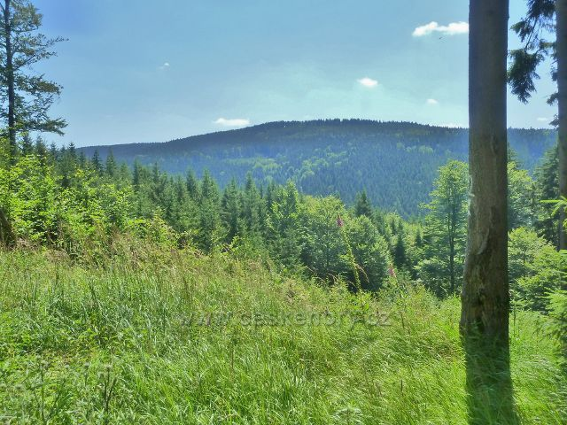 Mladkov - pohled z vrstevnicové cesty k vrchu Bouda (845 m.n.m.)