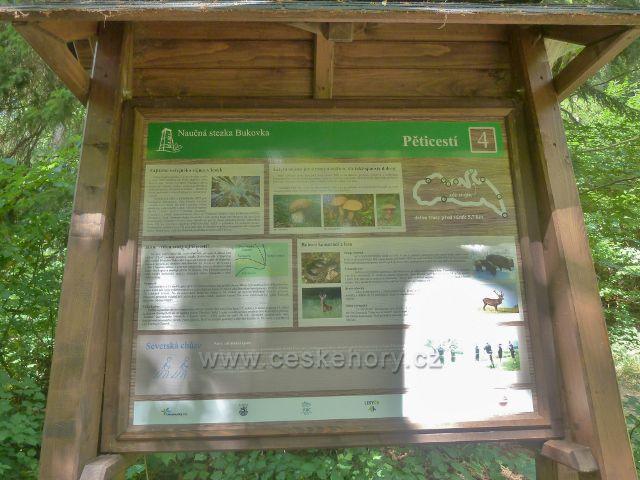 Rapotín - panel 4.zastavení NS Bukovka, Pěticestí