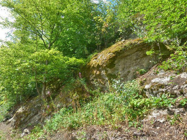 Rapotín - cesta po žluté a modré TZ k rozhledně Bukovka prochází ve své horní partii skalnatým terénem