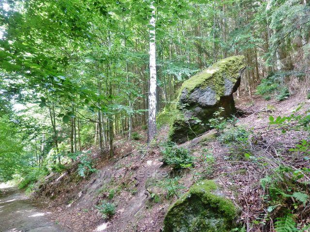 Rapotín - Bukovka, cesta k rozhledně je ve své horní partii lemována balvany a skalisky