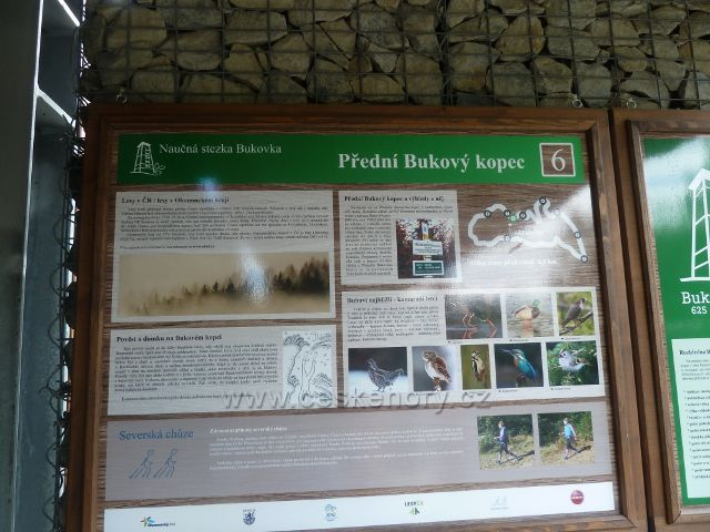 Rapotín - Bukovka, panel 6.zastavení NS Bukovka, Přední Bukový kopec je umístěn v přízemí rozhledny