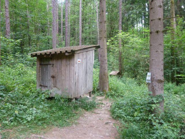 Rapotín - monitorovaný prostor ochránci přírody na trase po modré TZ na úbočí Předního Bukového