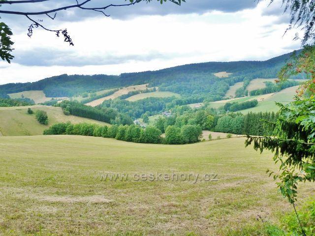Bohdíkov - pohled na pastviny nad Štědrákovi Lhotou