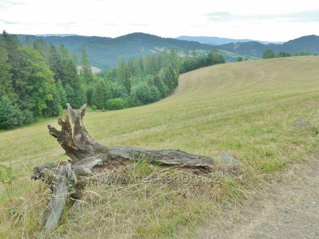 Bohdíkov -pastvina nad komňátkama