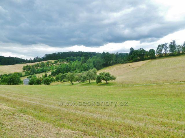 Bohdíkov - pastviny nad horním koncem obce Komňátka