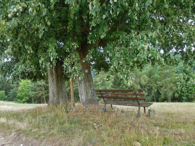 Bohdíkov - odpočinkové místo nad Komňátkama