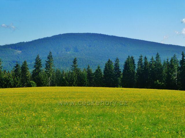 """Písařov - pohled z Hřebínku na vrch Jeřáb (1003 m.n.m.),který je jedinou """"tisícovkou"""" v Hanušovické vrchovině"""