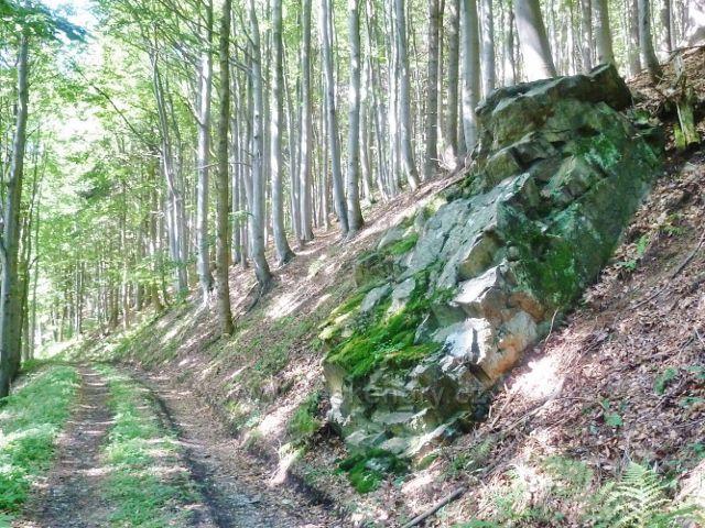 Malá Morava - cesta po modré TZ po úbočí Kamence