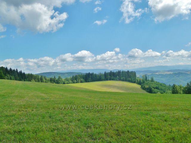 Štědrákova Lhota - pohled z luční enklávy k Hanušovické vrchovině a Jeseníkům