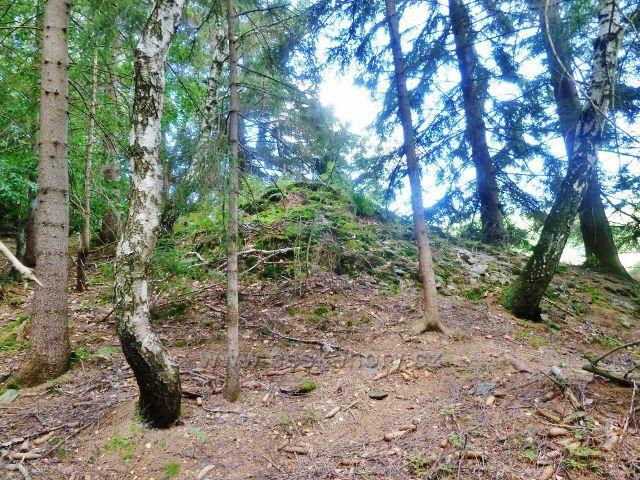 Štědrákova Lhota - bývalá agrární hromada vypovídá o tom, že se i tato místa zemědělsky využívala