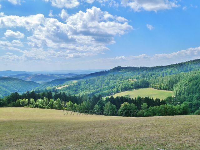 Štědrákova Lhota - pohled z pastviny nad obcí k Hanušovické vrchovině