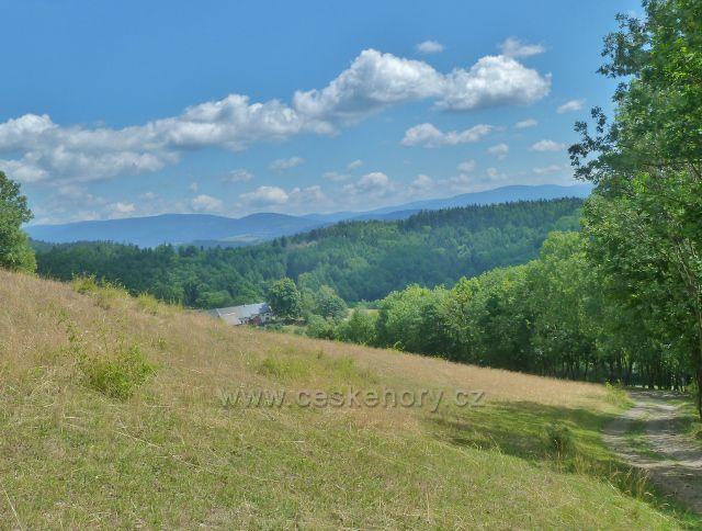 Štědrákova Lhota - pohled z cesty okrajem pastviny nad obcí k Hanušovické vrchovině
