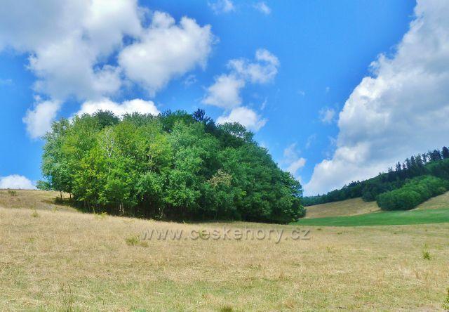 Štědrákova Lhota - pastviny nad horním koncem obce