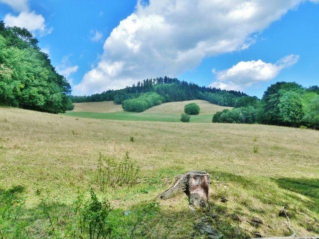 Štědrákova Lhota - pastviny nad obcí