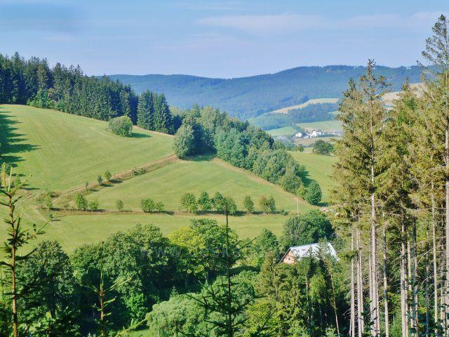 Horní Orlice - pohled z Hraběcí cesty na úbočí vrchu Kamenáč.V pozadí část masivu Bukové hory