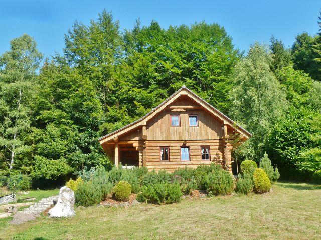 Horní Orlice - nová roubená chata pod lesem  v horní části obce