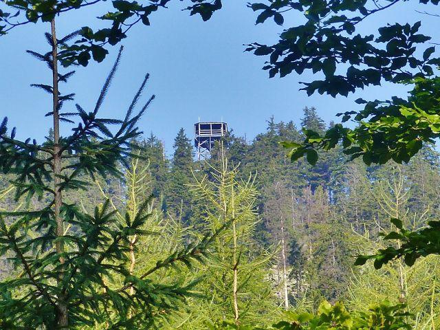 Pohled na rozhledovou plošinu rozhledny na vrchu Klepý