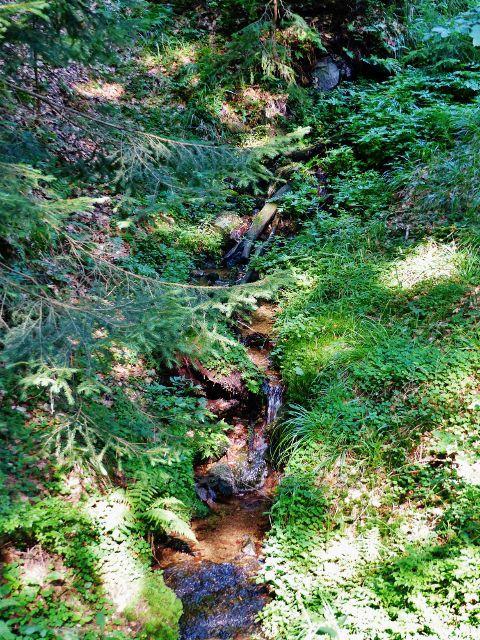 Přítok Hlubokého potoka pod sedlem Puchača