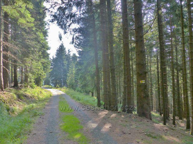 Odbočka cesty po žluté TZ za Zbojnickou chatou