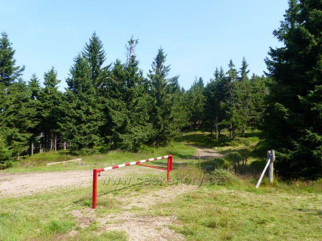 Dolní Morava - polská část sedla Puchača. Vlevo je cesta po žluté TZ do Polska, vpravo pak hraniční stezka po zelené TZ na Malý Sněžník