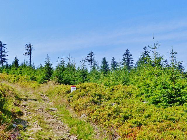 Dolní Morava - stezka po červené a zelené TZ ze sedla Puchača ns vrchol Hleďsebe