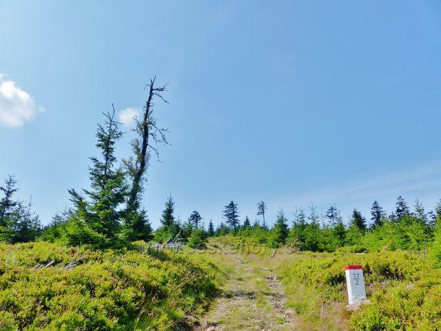 Dolní Morava - cesta po státní hranici ze sedla Puchača na vrchol Hleďsebe